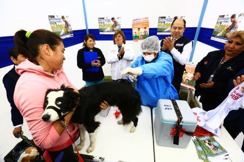 Ministerio de Salud lanza Campaña Antirrábica de Vacunación Canina VAN CAN 2019