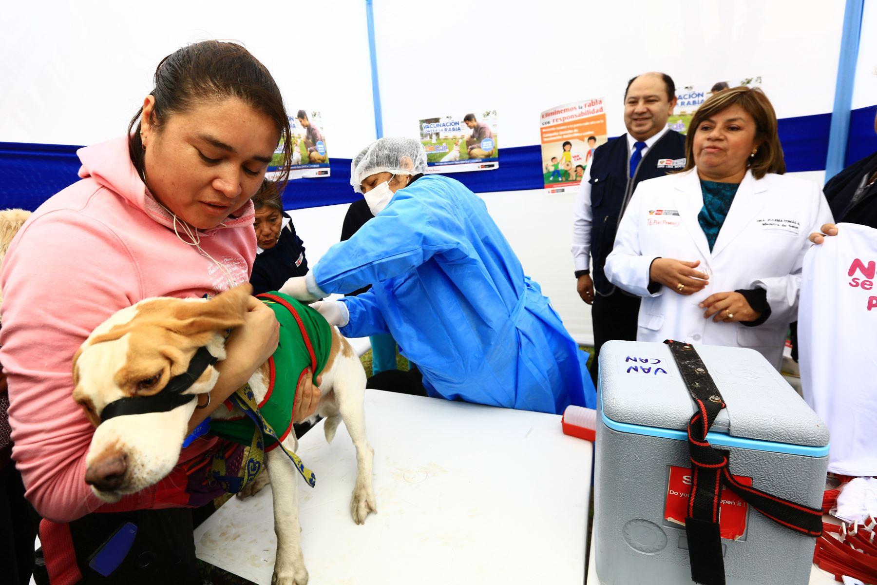 El Ministerio de Salud (Minsa) inmuniza gratuitamente contra la rabia a más de un millón de canes en la Campaña Antirrábica de Vacunación Canina VAN CAN 2019. Foto: ANDINA/ Pedro Cárdenas