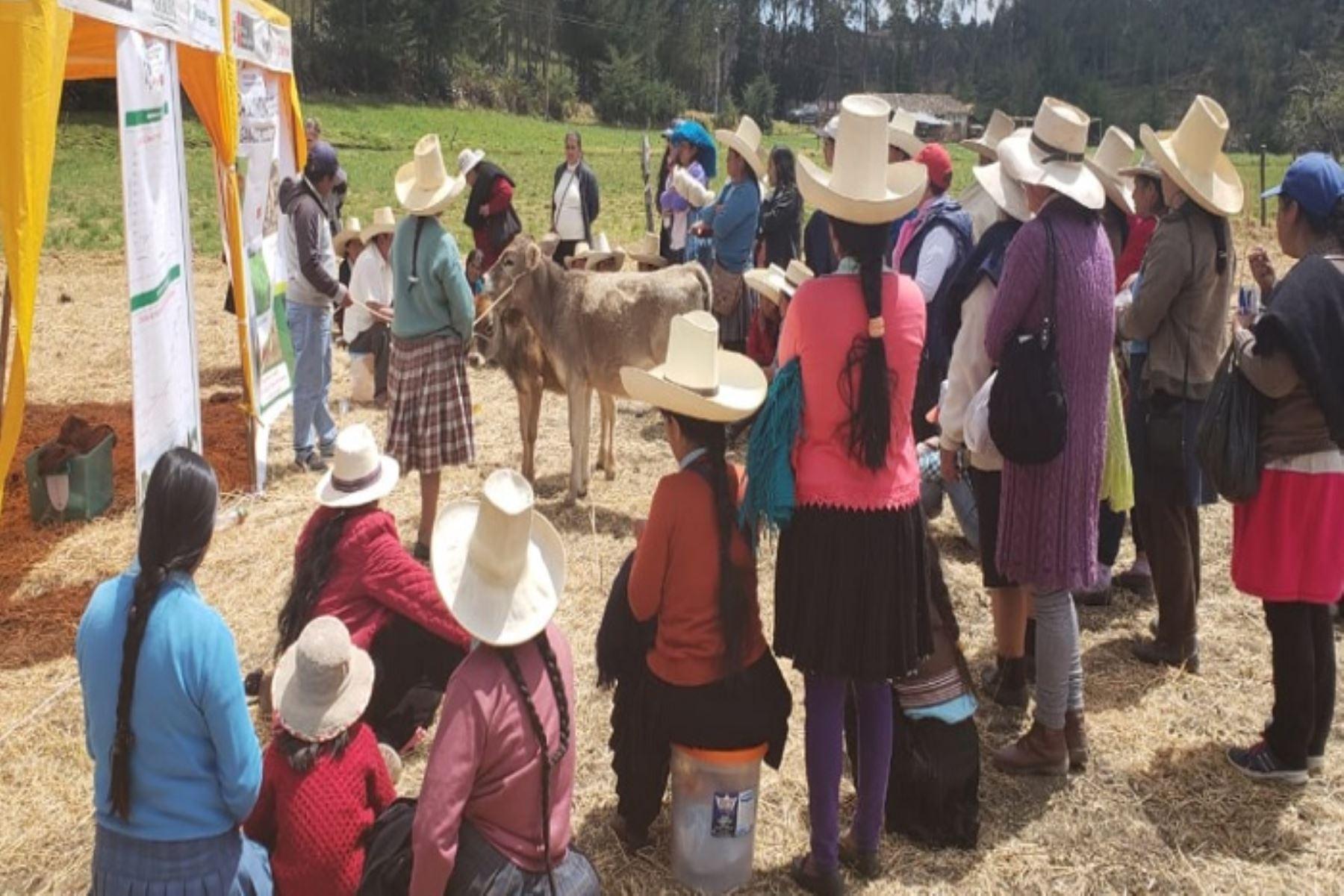 Agro Rural realizó esta actividad con la participación de autoridades y  líderes ganaderos locales.