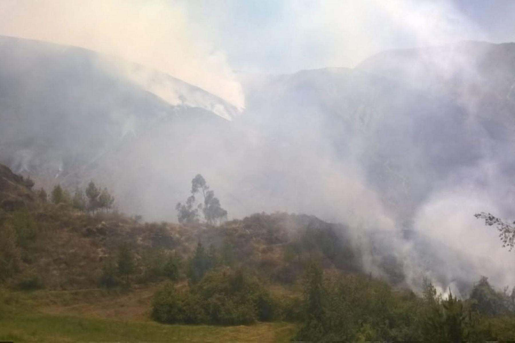 El Centro de Operaciones de Emergencia Regional (COER) Áncash informó que se han reportado 52 incendios en lo que va del año. Foto: ANDINA/Gonzalo Horna