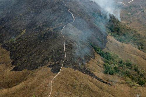 Imágenes aéreas muestran los daños del incendio en la Amazonía de Brasil