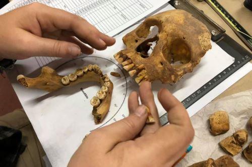 Fardos funerarios, mantos, cerámicas, murales, documentos históricos y mucho más puede conocer en las visitas virtuales a 12 museos peruanos. Foto: ANDINA/Difusión