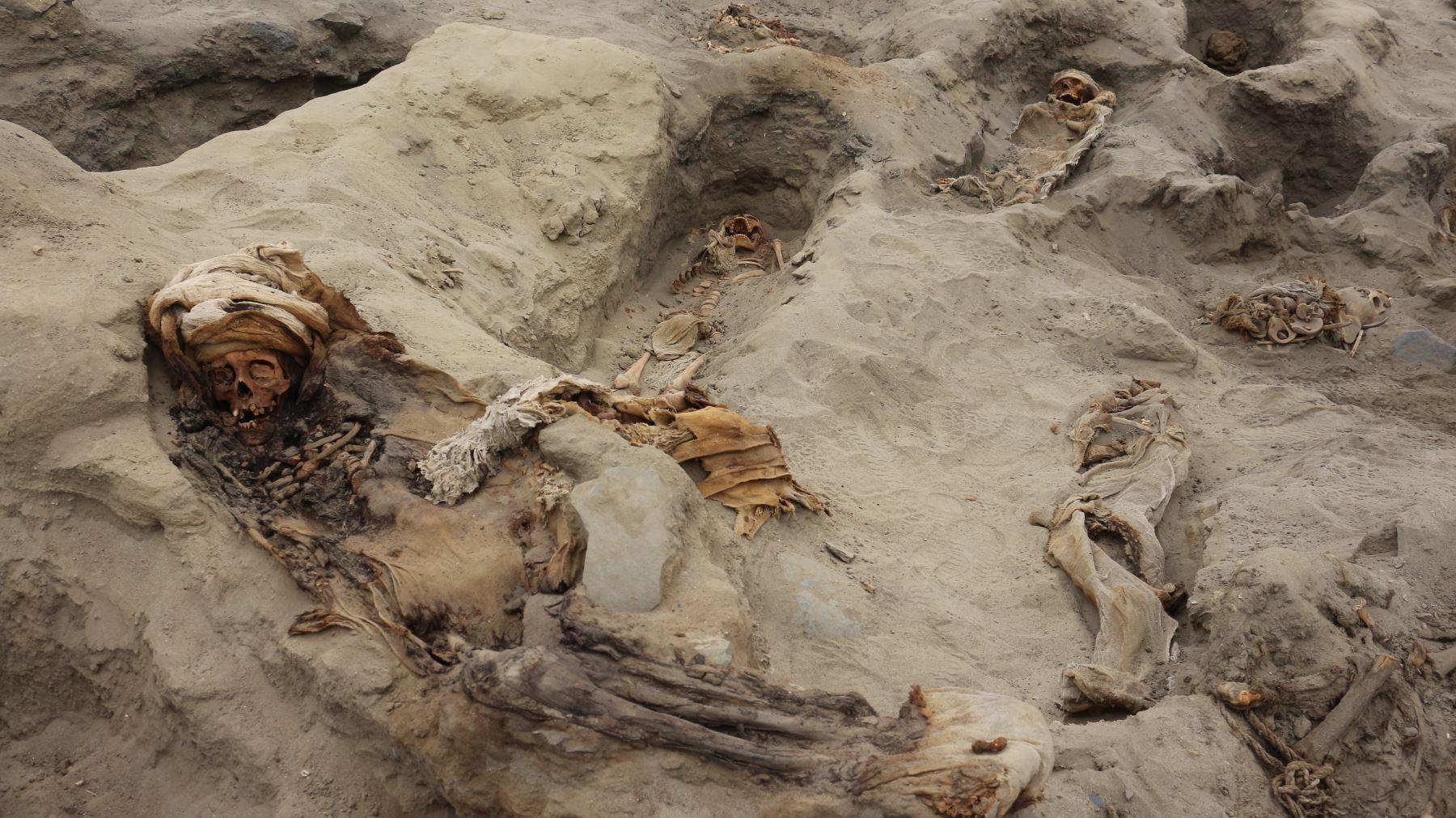 Un equipo de arqueólogos peruanos halló restos de alrededor de 250 niños y 40 guerreros sacrificados entre los siglos XIII y XV en el distrito de Huanchaco, provincia de Trujillo. Foto: Cortesía/ Luis Puell