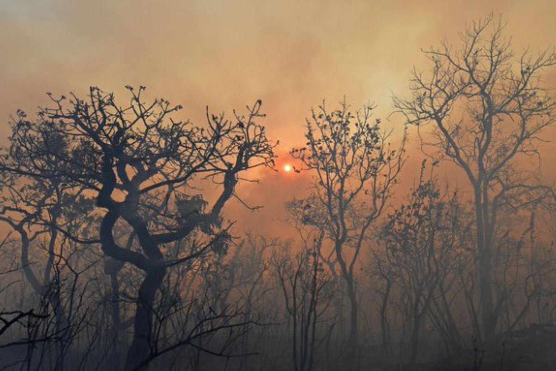 Aumento de aerosoles por quema de bosques afecta la calidad del aire y la salud, reveló el Instituto Geofísico del Perú.