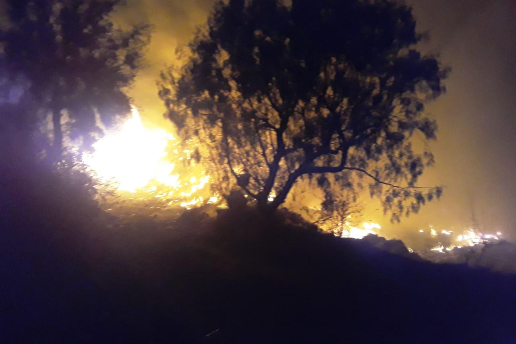 El incendio forestal de proporciones registrado muy cerca del Parque Nacional Huascarán (Áncash) afectó una hectárea de pastizales.