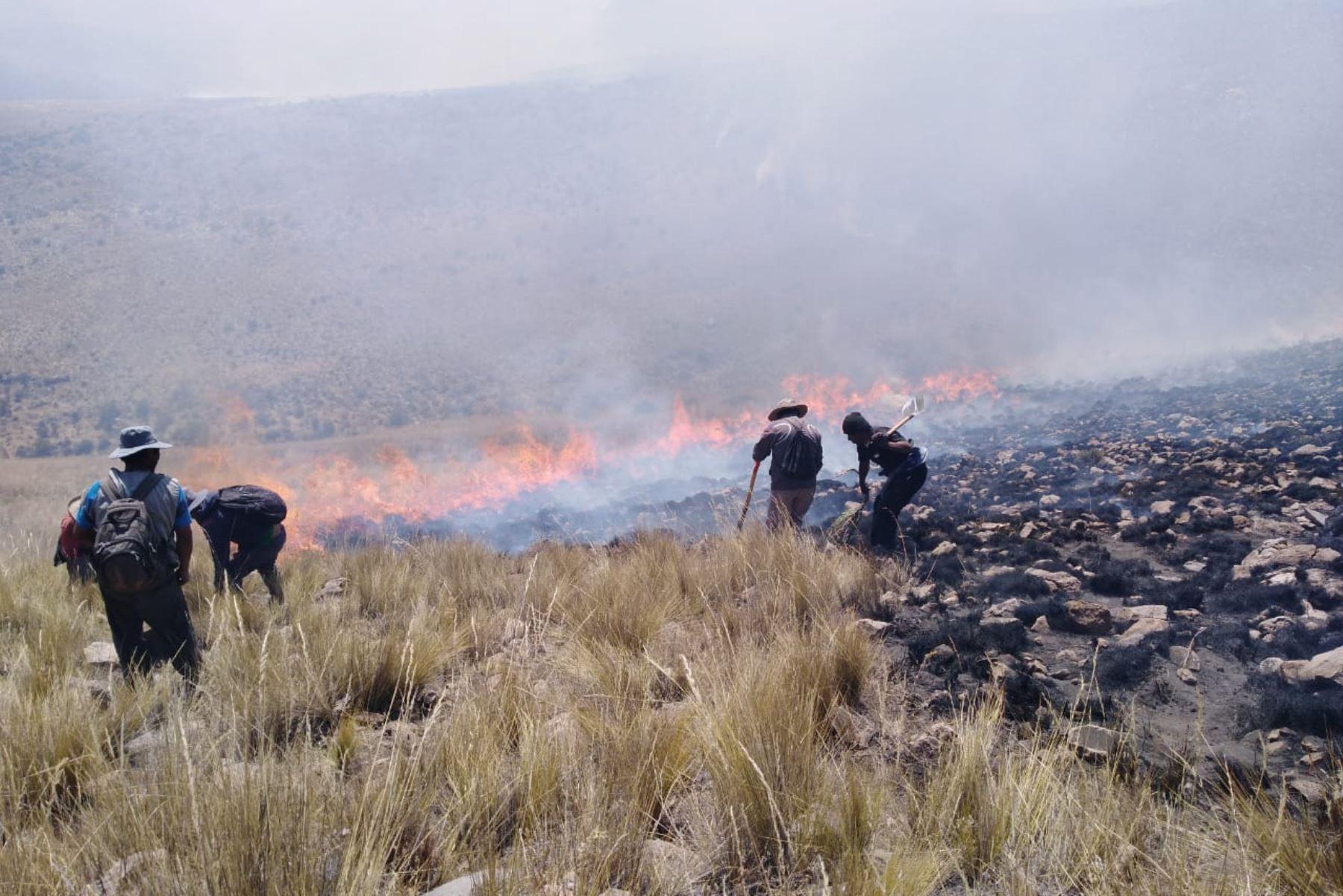 En la región Arequipa se han registrado 20 incendios forestales en lo que va del año y en su mayoría fueron provocados por los agricultores. Foto: ANDINA/Difusión
