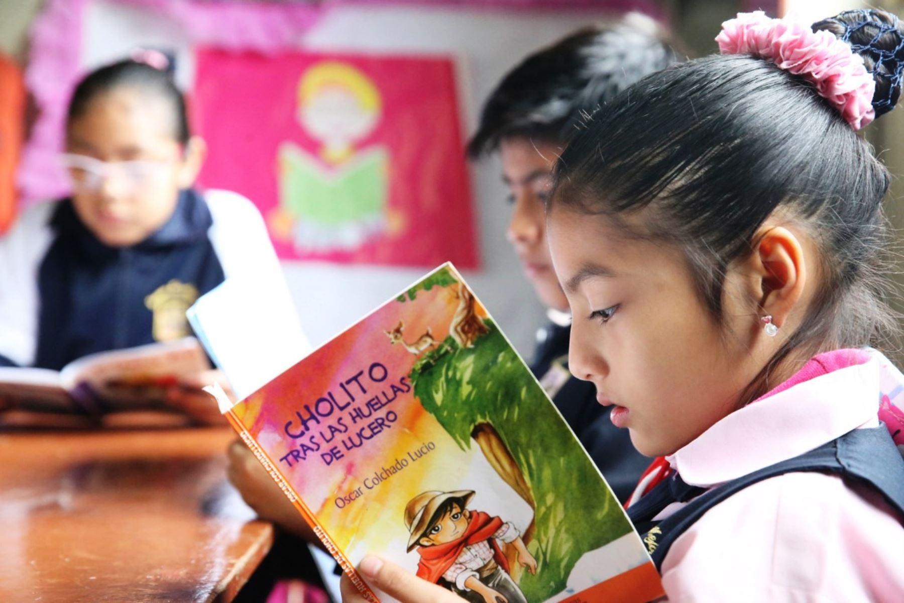 Minedu triplicará presupuesto para bibliotecas en colegios en el 2020. Foto: ANDINA/Difusión.
