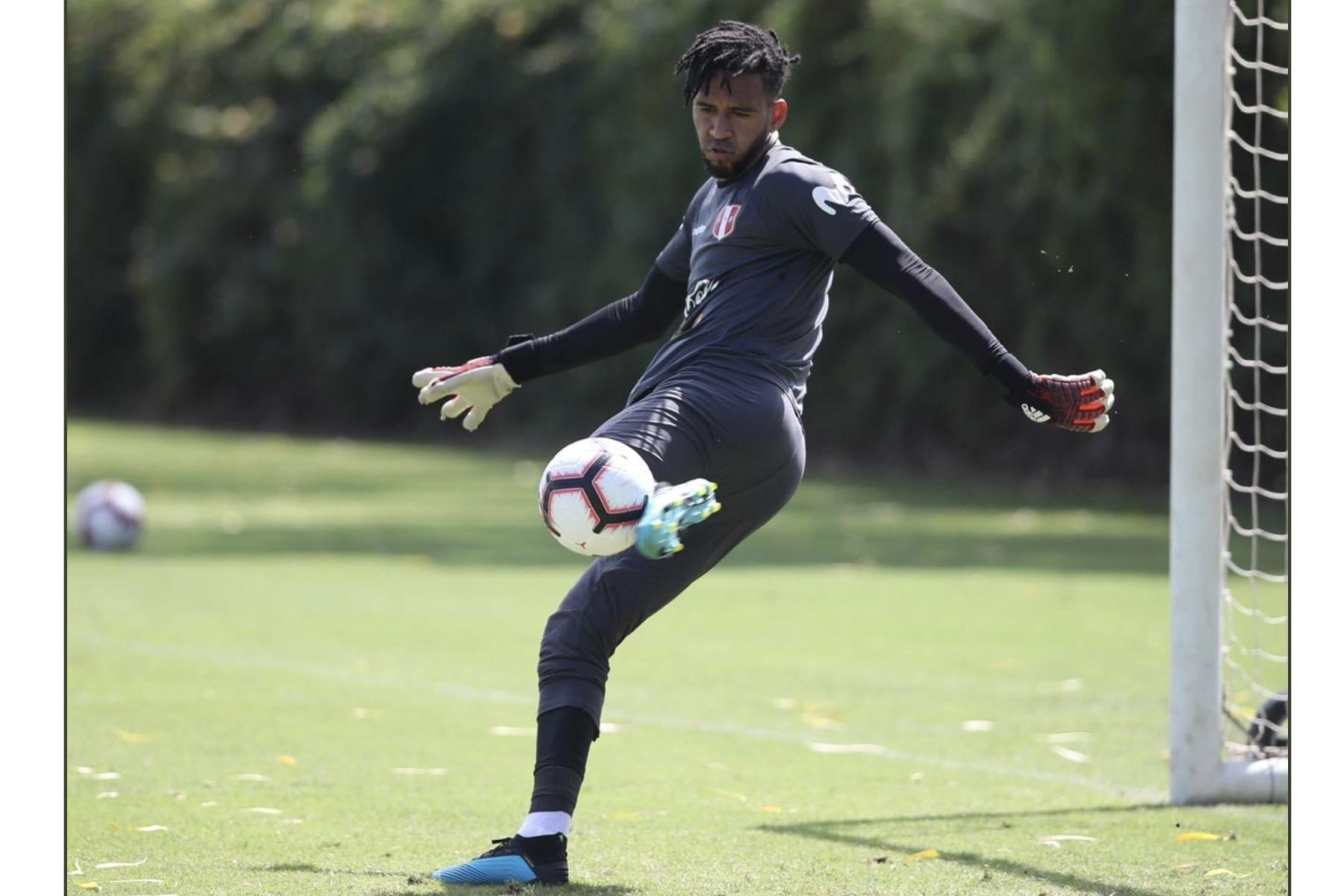 Pedro Gallese, entreno en La selección Peruana de futbol al mando del profesor Ricardo Gareca en el Banc of California Stadium.Foto:ANDINA/FPF