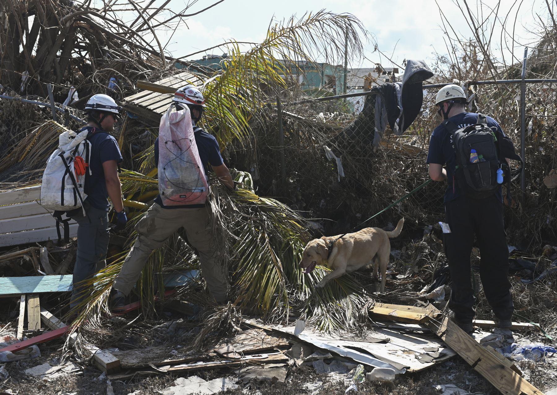 Un equipo canadiense con perros de búsqueda y rescate, buscan en los escombros en Marsh Harbour, Bahamas, una semana después del paso del huracán Dorian. Las autoridades de Bahamas han actualizado el número de muertos por el huracán Dorian y superan mas de 50 fallecidos. Foto: AFP