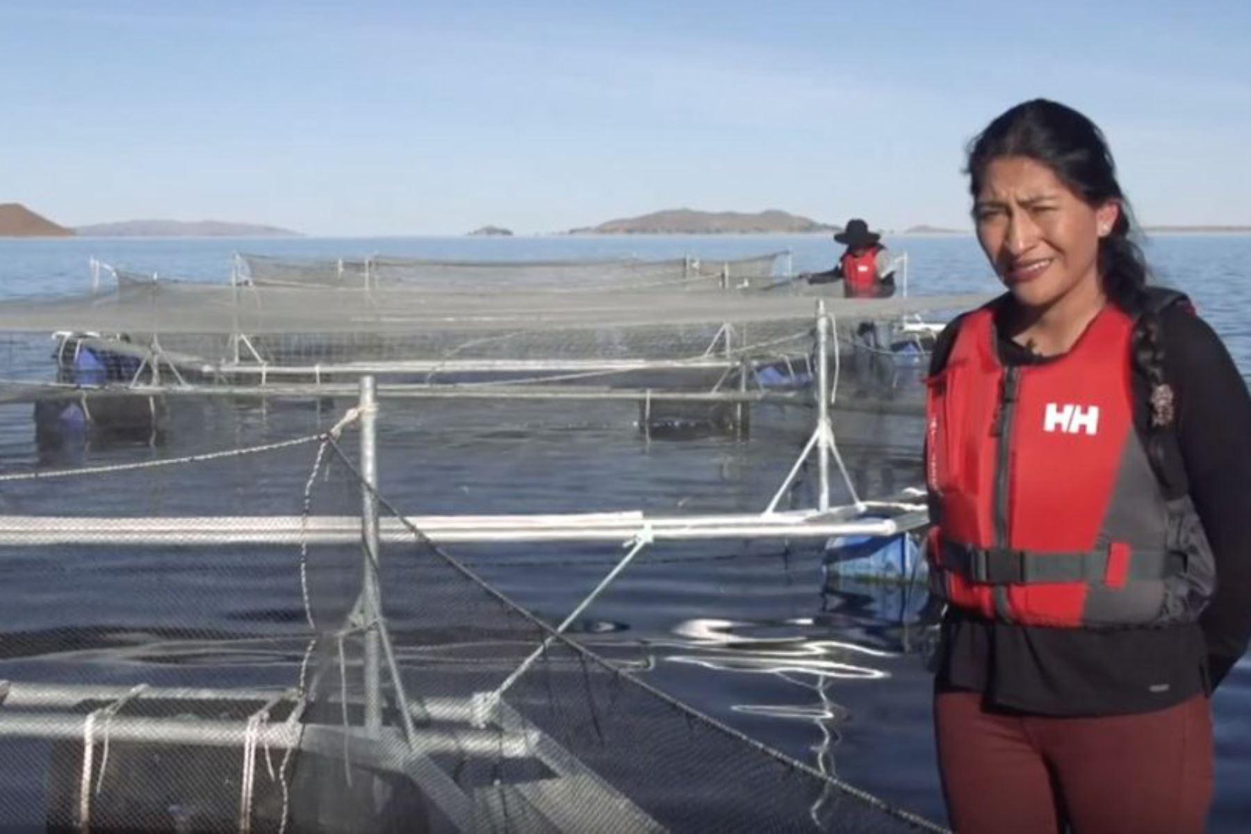 Reyna Callata, gerenta general de Truchas Arapa SAC, resaltó que un grupo de mujeres de la comunidad del lago Arapa, región Puno, desarrollan la acuicultura sostenible. Foto:ANDINA/PNIPA