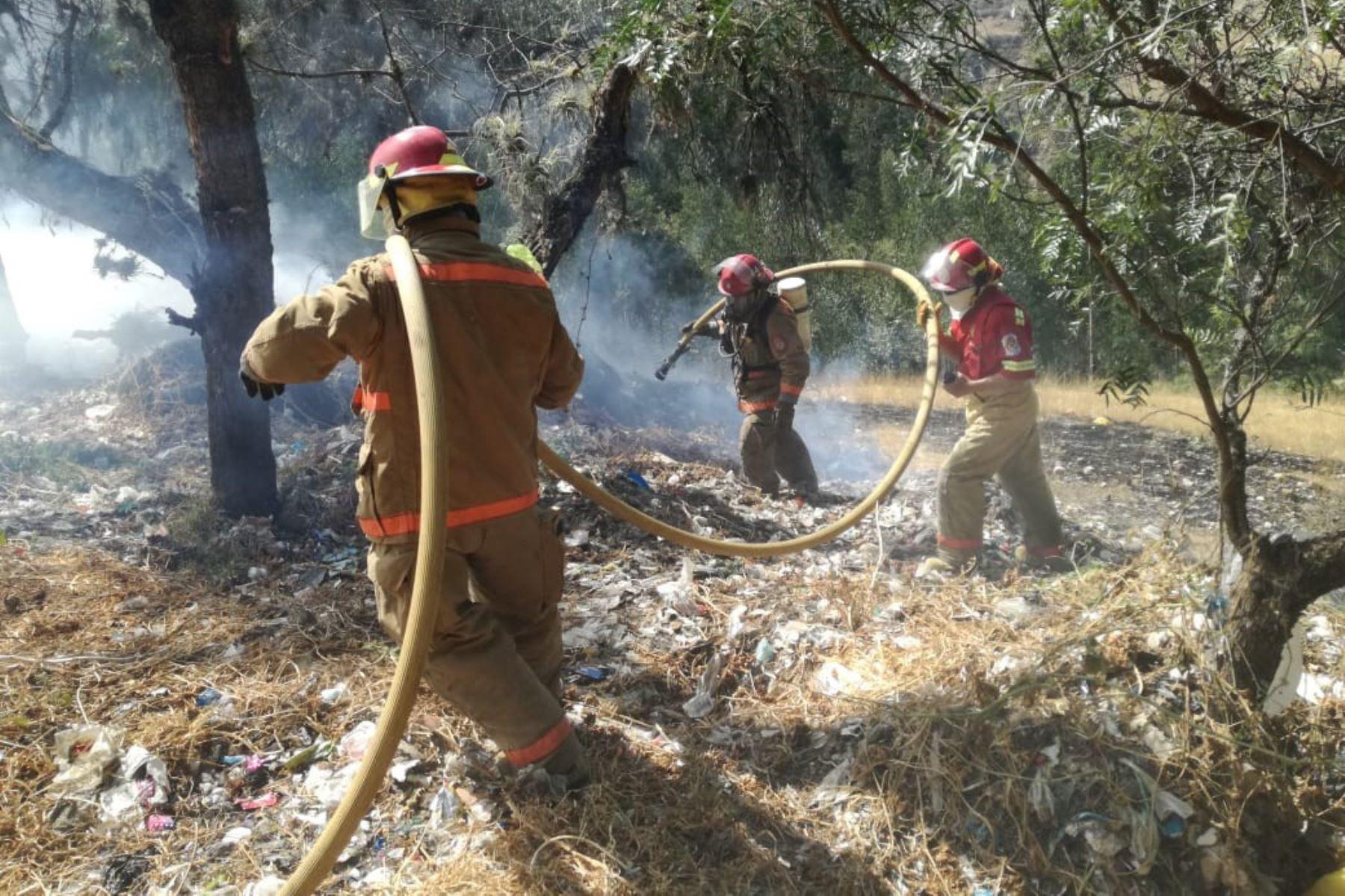 Incendio forestal arrasó con 15 hectáreas de bosque cerca del Parque Nacional Huascarán, región Áncash.
