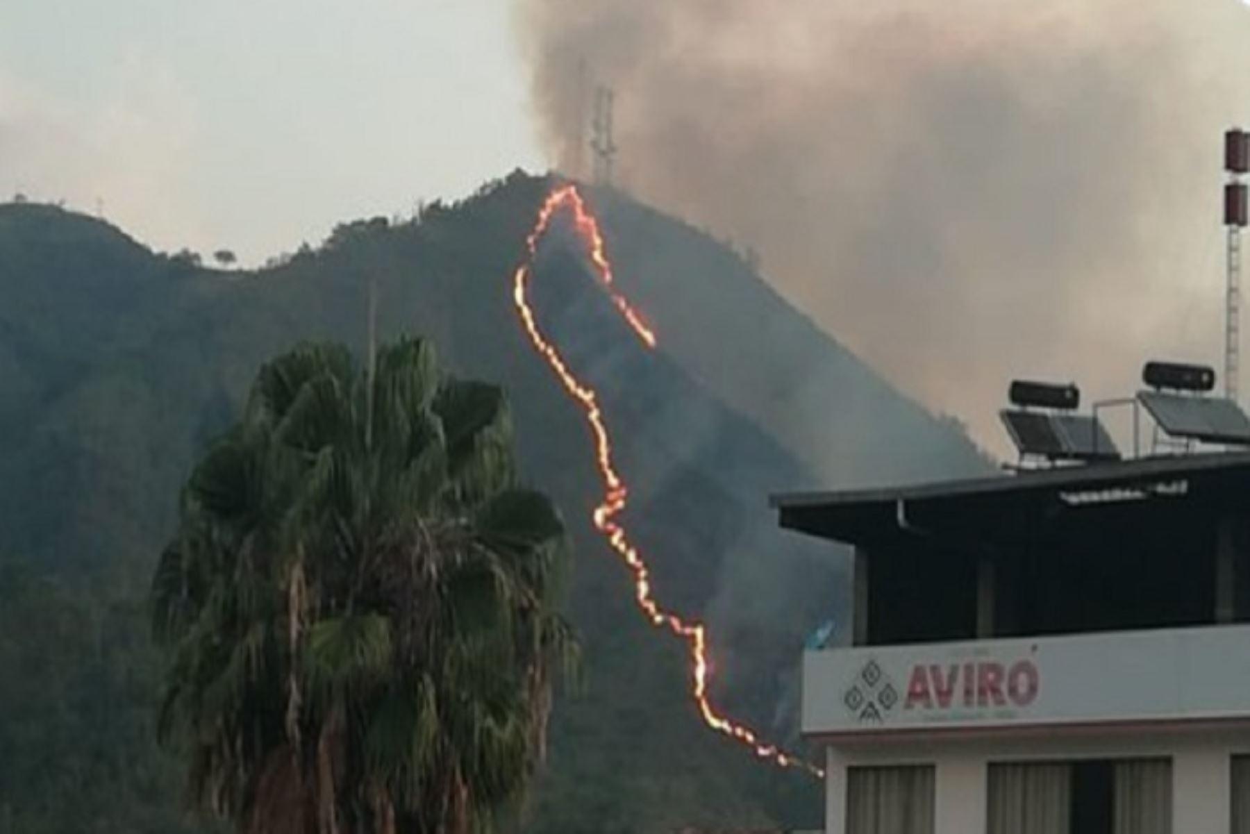 Personal de bomberos, de la Municipalidad de Chanchamayo y pobladores de la zona vienen trabajando en la extinción del incendio forestal que se inició esta tarde en el sector Vista alegre de la Merced (frente al sector Pampa el Carmen, en la ciudad de La Merced), del distrito y provincia de Chanchamayo.