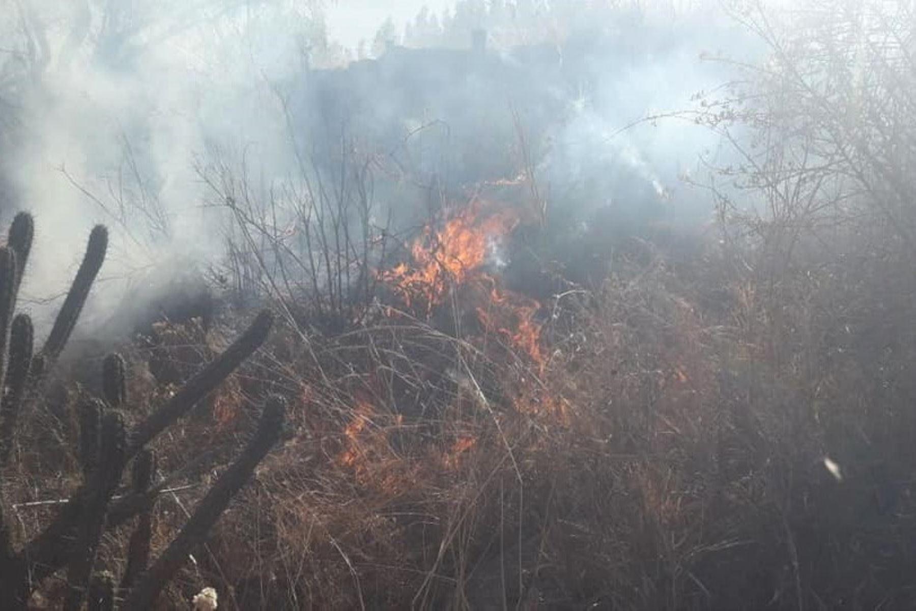 Controlan incendio forestal en el distrito ancashino de Independencia.