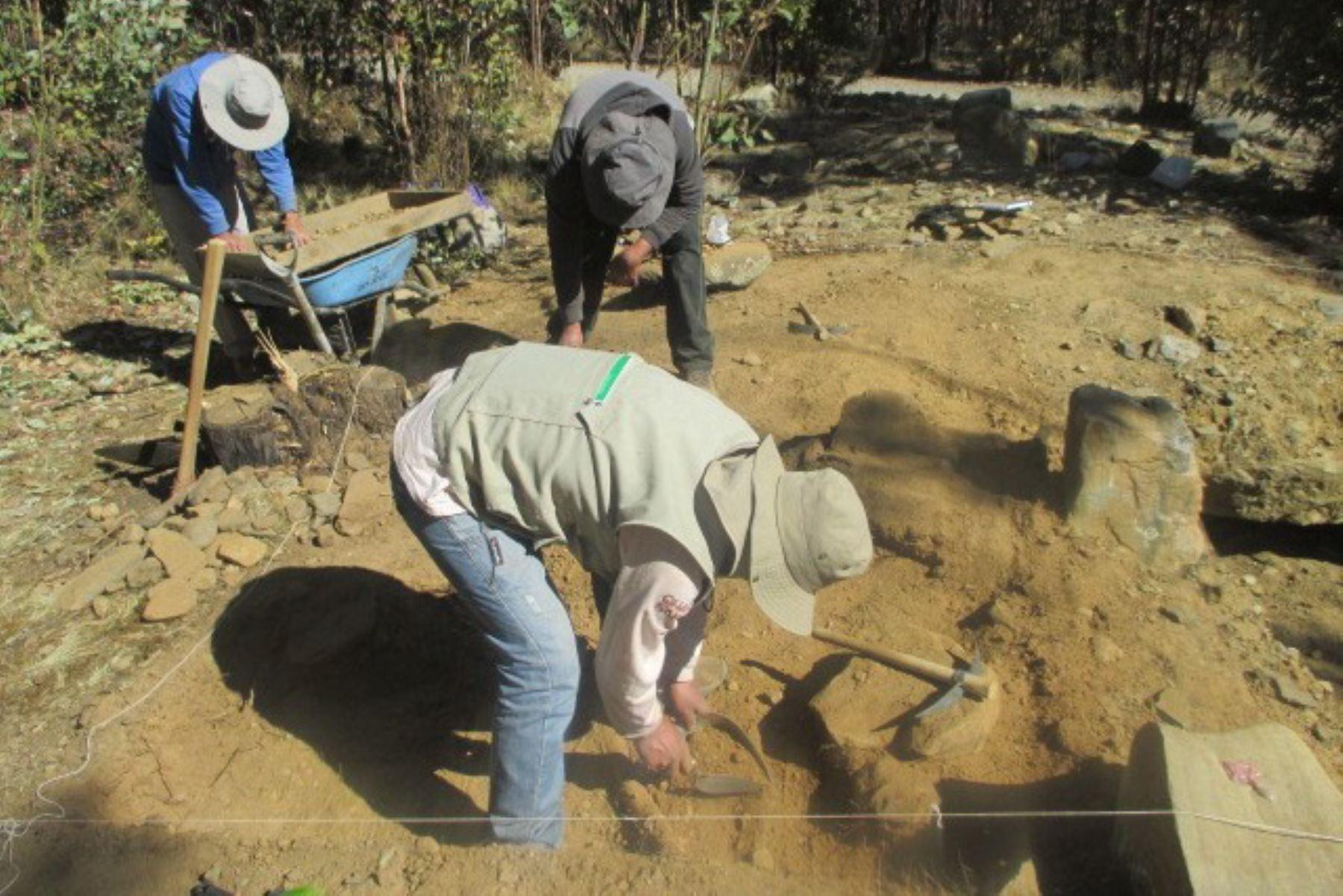 Descubren evidencias arqueológicas de la cultura Recuay en el distrito de Cátac, en la sierra de Áncash. Foto: Proyecto de Investigación Arqueológica Cruz Punta