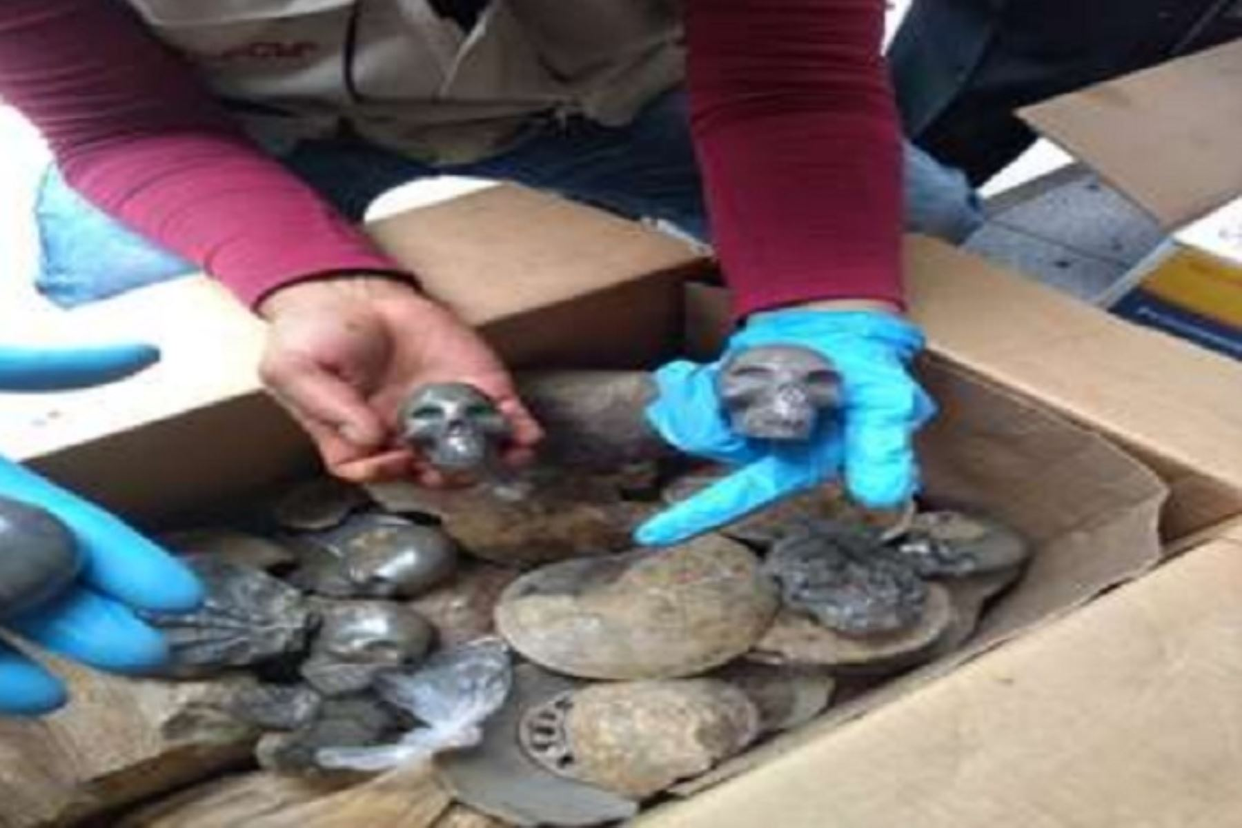 La Policía incautó 646 objetos paleontológicos fosilizados entre Ammonites, Bivalvos, Trilobites, Troncos fosilizados y otros, de incalculable valor para el Estado, los mismos que eran exhibidos y comercializados en cuatro stands de la feria artesanal del distrito de Aguas Calientes, en la provincia de Urubamba, región Cusco.