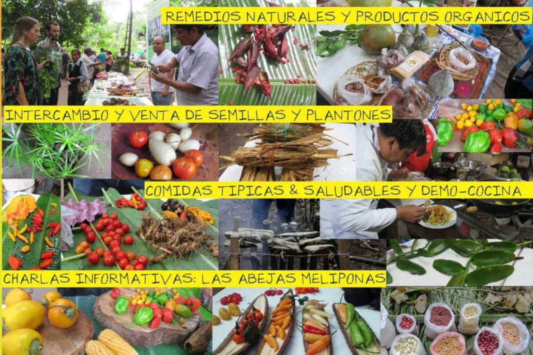 La XV Feria de Intercambio de Semillas y Saberes congregará este sábado a más de 60 agricultores de Madre de Dios en el Ecocentro de Puerto Maldonado.