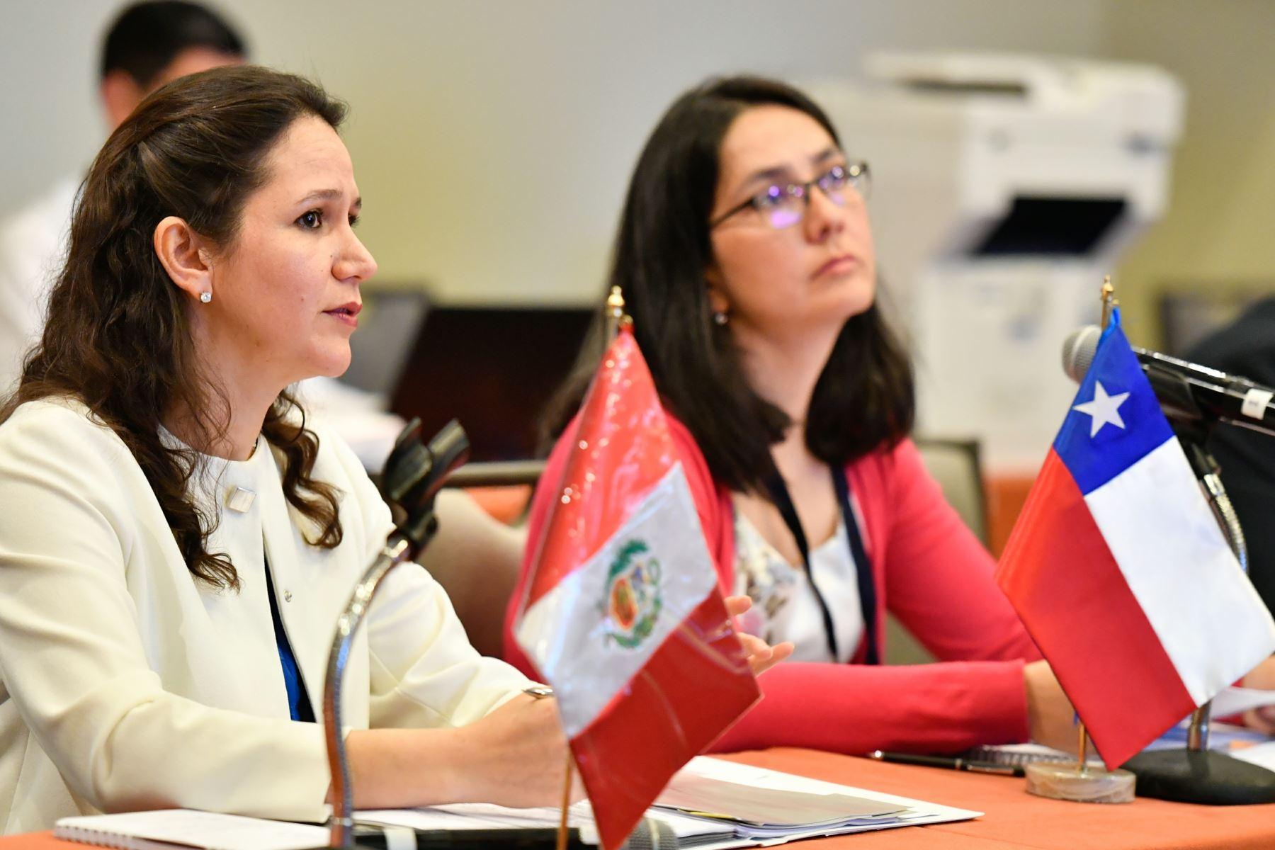 Concluyen las reuniones de los ejes temáticos, lideradas por los vicecancilleres, previas al Encuentro Presidencial y III Gabinete Binacional que se realiza en Paracas.Foto:ANDINA/MRE