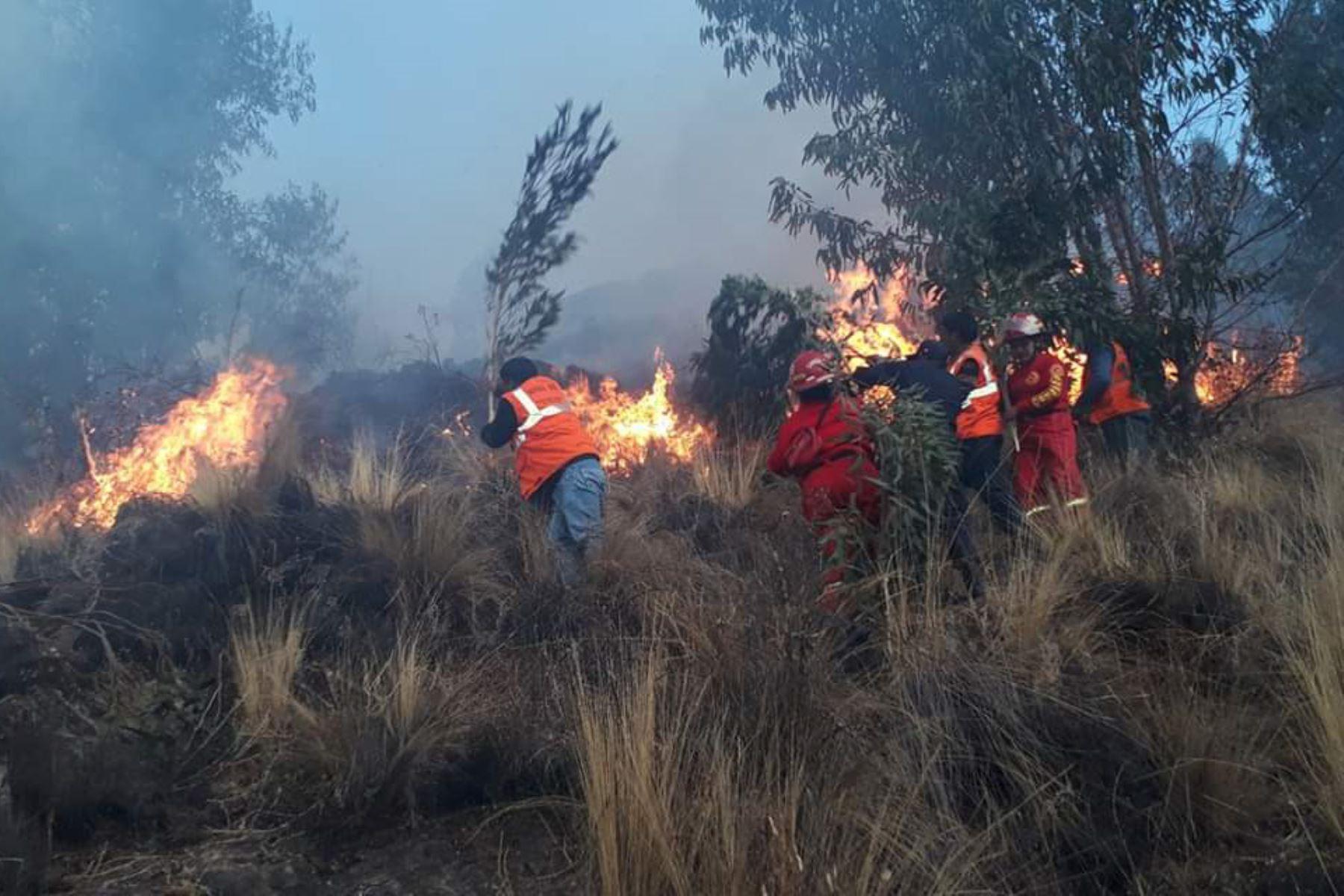 El Indeci informó que los incendios forestales registrados en Puno, Áncash y Cusco dejaron seis familias damnificadas y un herido. Fotos: ANDINA/Difusión