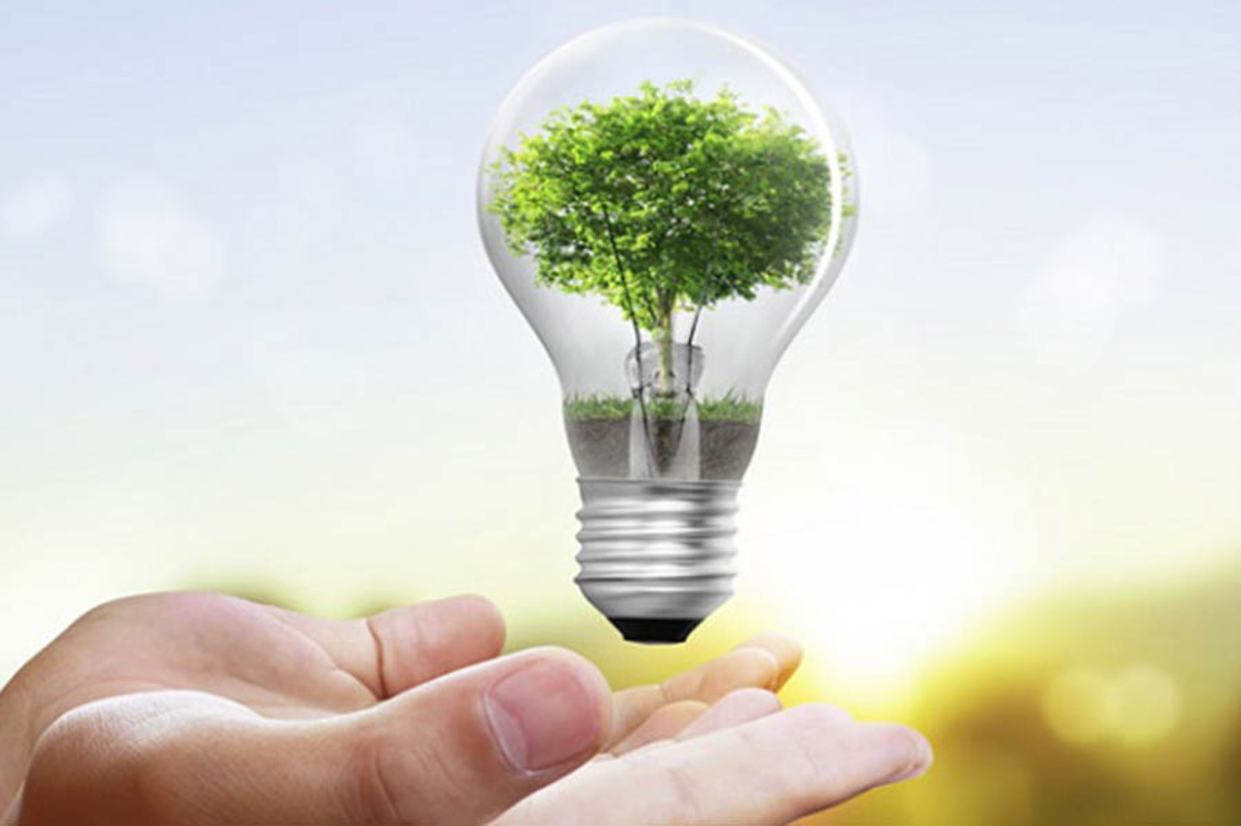 El Día Mundial del Ahorro de Energía se conmemora el 21 de octubre.
