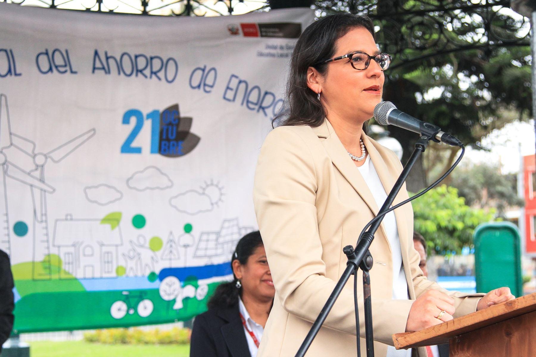 Viceministra de Electricidad, Patricia Elliot. Foto: Cortesía.