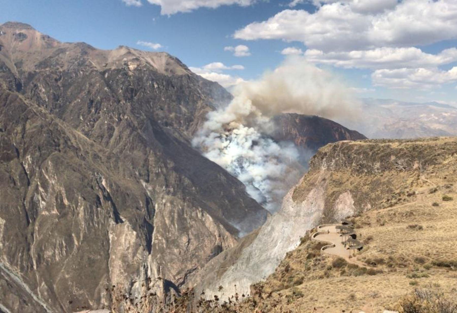 Alerta en Arequipa por incendio forestal en el valle del Colca. ANDINA/Difusión
