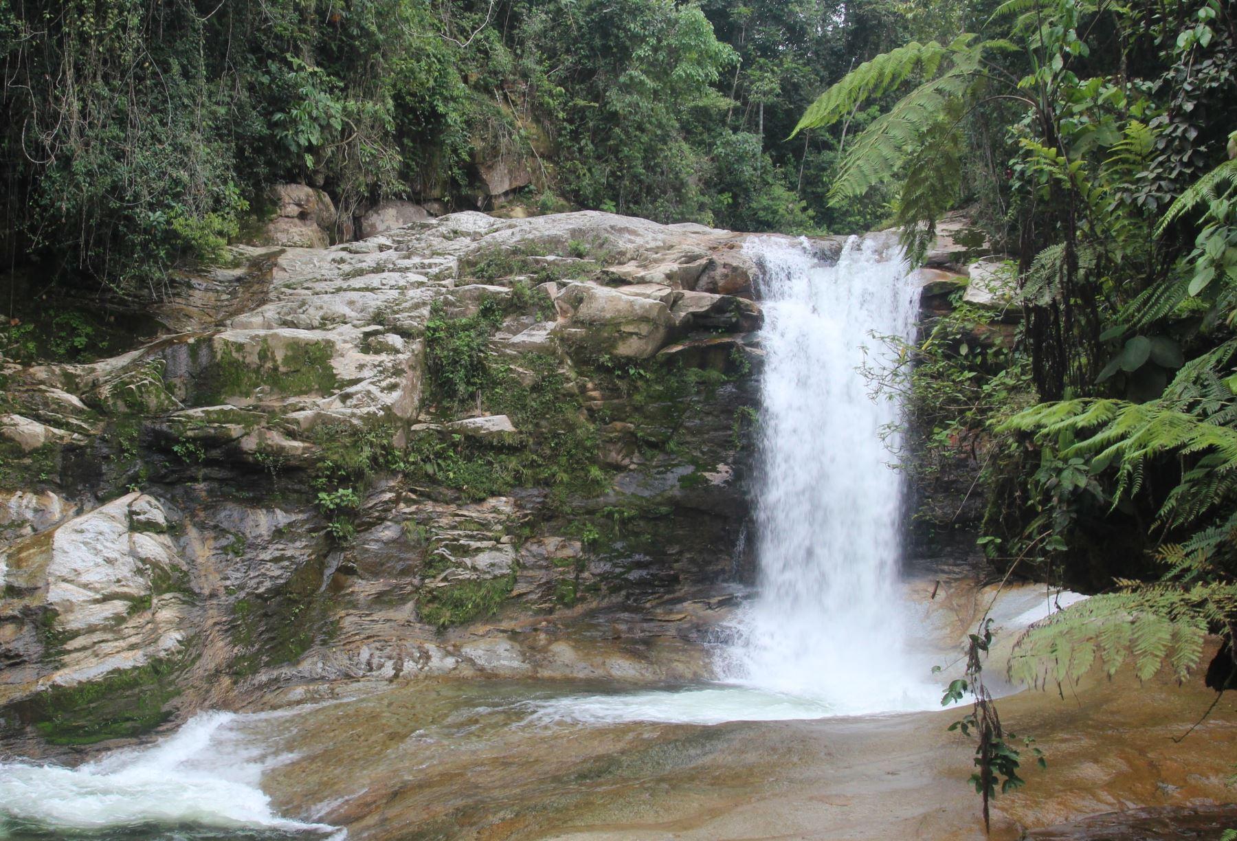 Satipo: buscan revitalizar su oferta ecoturística con impresionantes cataratas - Agencia Andina