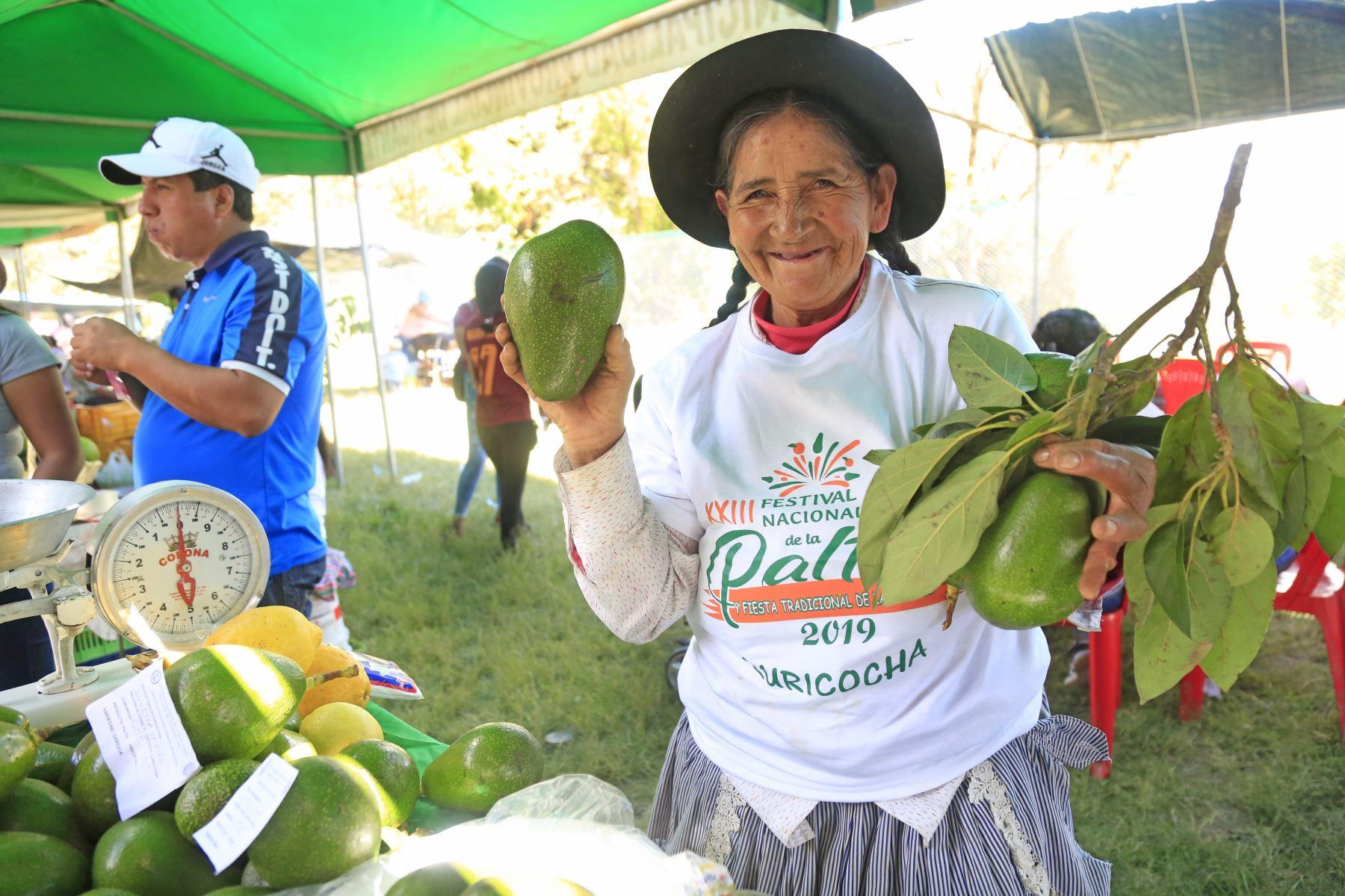 Ayacucho apuesta por la producción de palta e invierte más de S/ 5 millones para aumentar su cultivo. ANDINA/Difusión