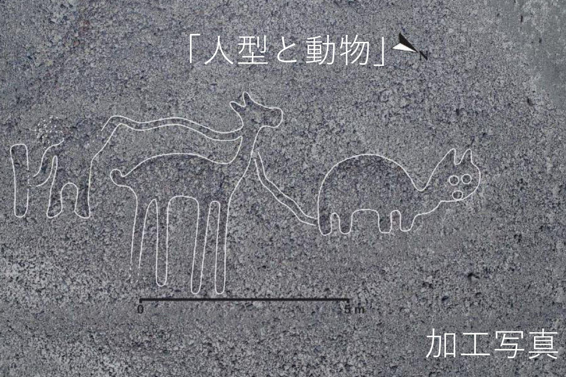 Un grupo de investigadores de la Universidad de Yamagata descubrió 143 nuevos geoglifos que representan seres vivos y otros objetos de las Líneas de Nazca. Foto: Difusión Universidad de Yamagata