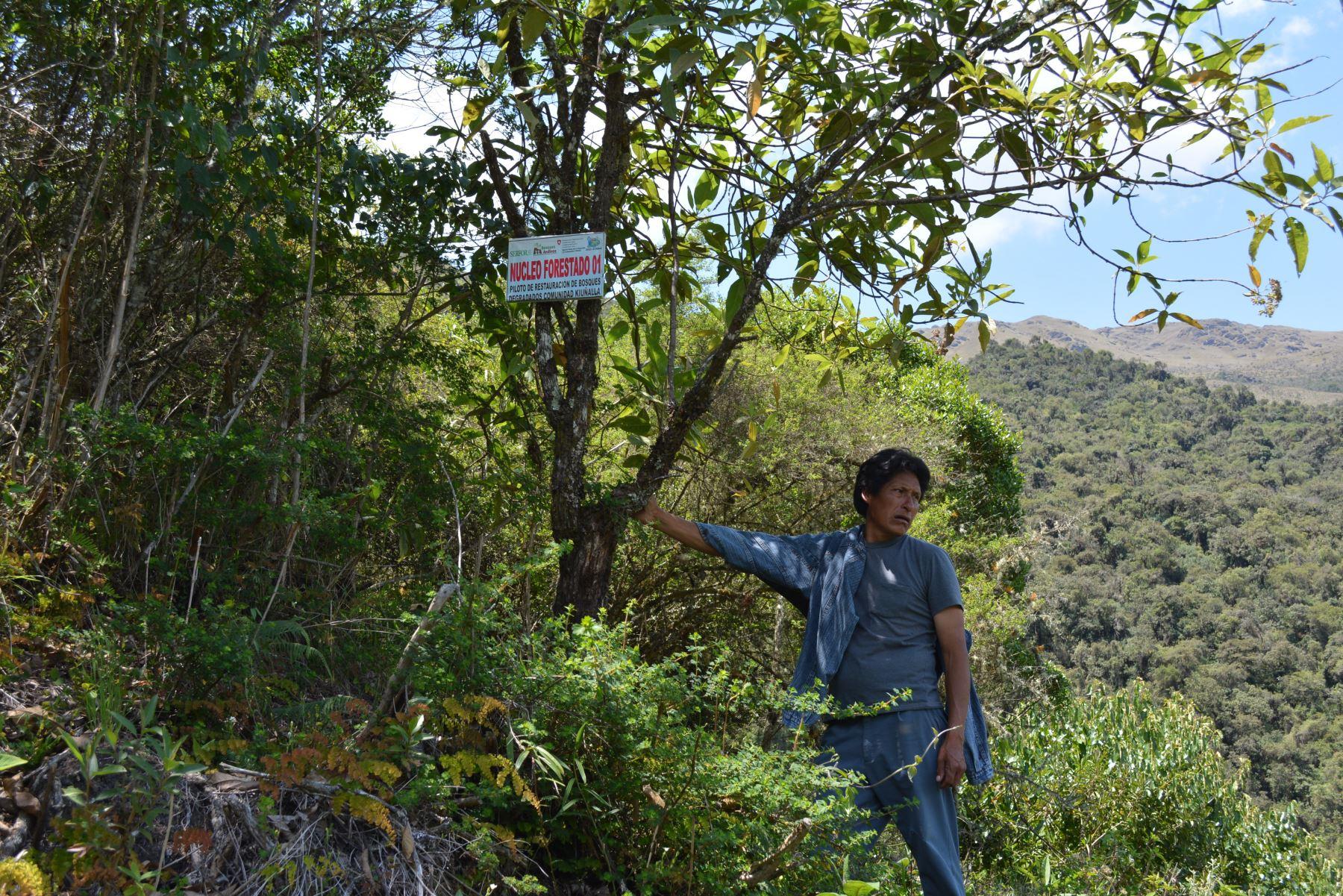 Serfor presentará Plan de Restauración de Ecosistemas y Tierras Degradadas.