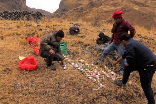La Reserva Paisajística Nor Yauyos Cochas contará con banco de semillas de papas nativas, el primero ubicado en un área natural protegida.