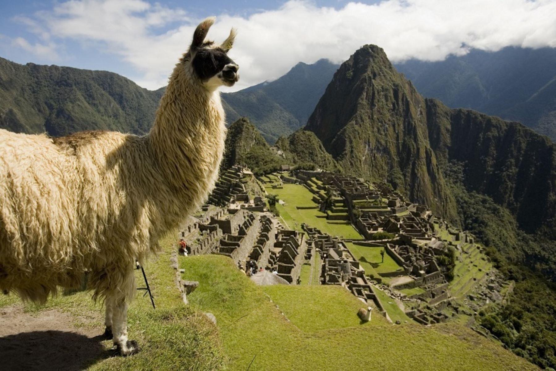 El 2020 se presenta promisorio para Machu Picchu y así lo reconoce la prestigiosa revista Forbes que incluyó a la ciudadela inca en una selecta lista de 20 destinos perfectos del mundo para viajar y conocer este año. ANDINA/Difusión