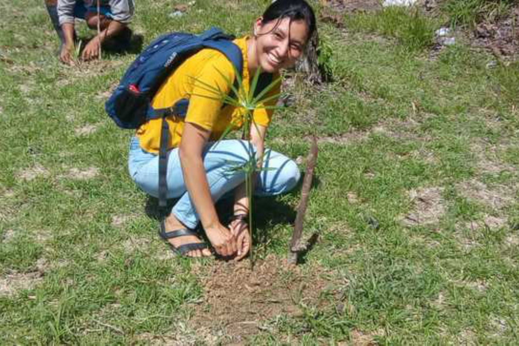 Escolares de secundaria de la comunidad El Salvador del distrito de Mazán (Loreto) sembraron 37 plántulas de palmeras de aguaje, como parte de capacitación a cargo del Minagri.