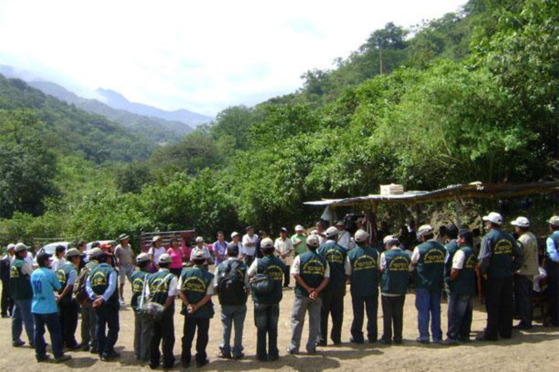 El Bosque de Moyán-Palacio (Lambayeuqe) tiene 8,457 hectáreas y es un área de conservación para las poblaciones de pava aliblanca.