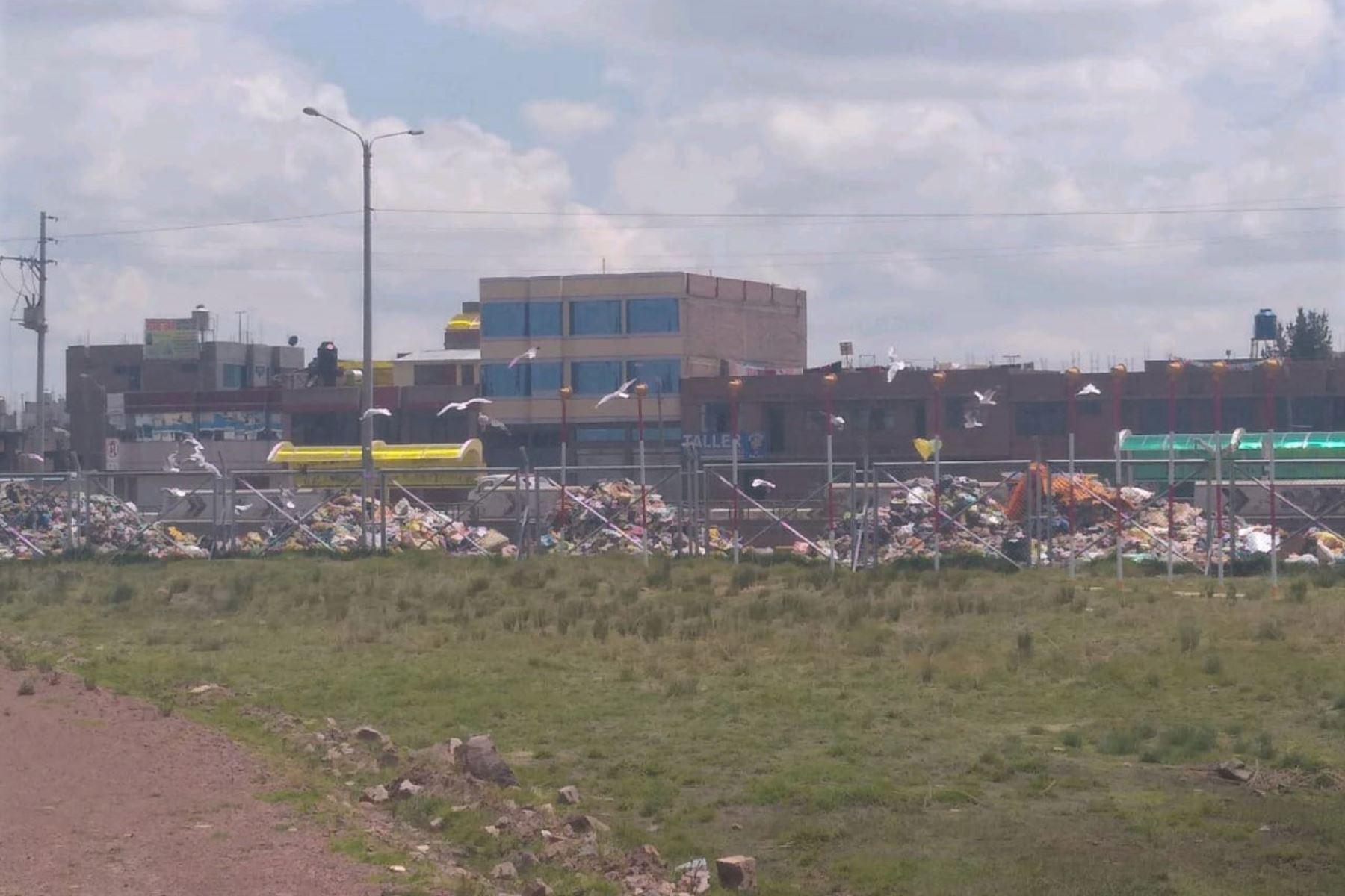 Alertan por creciente presencia de aves alrededor de aeropuerto de Juliaca, en Puno. ANDINA/Difusión