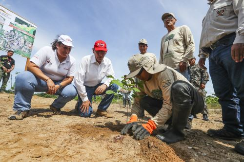 El presidente Martín Vizcarra, supervisó los trabajos de recuperación forestal en la Reserva Nacional Tambopata