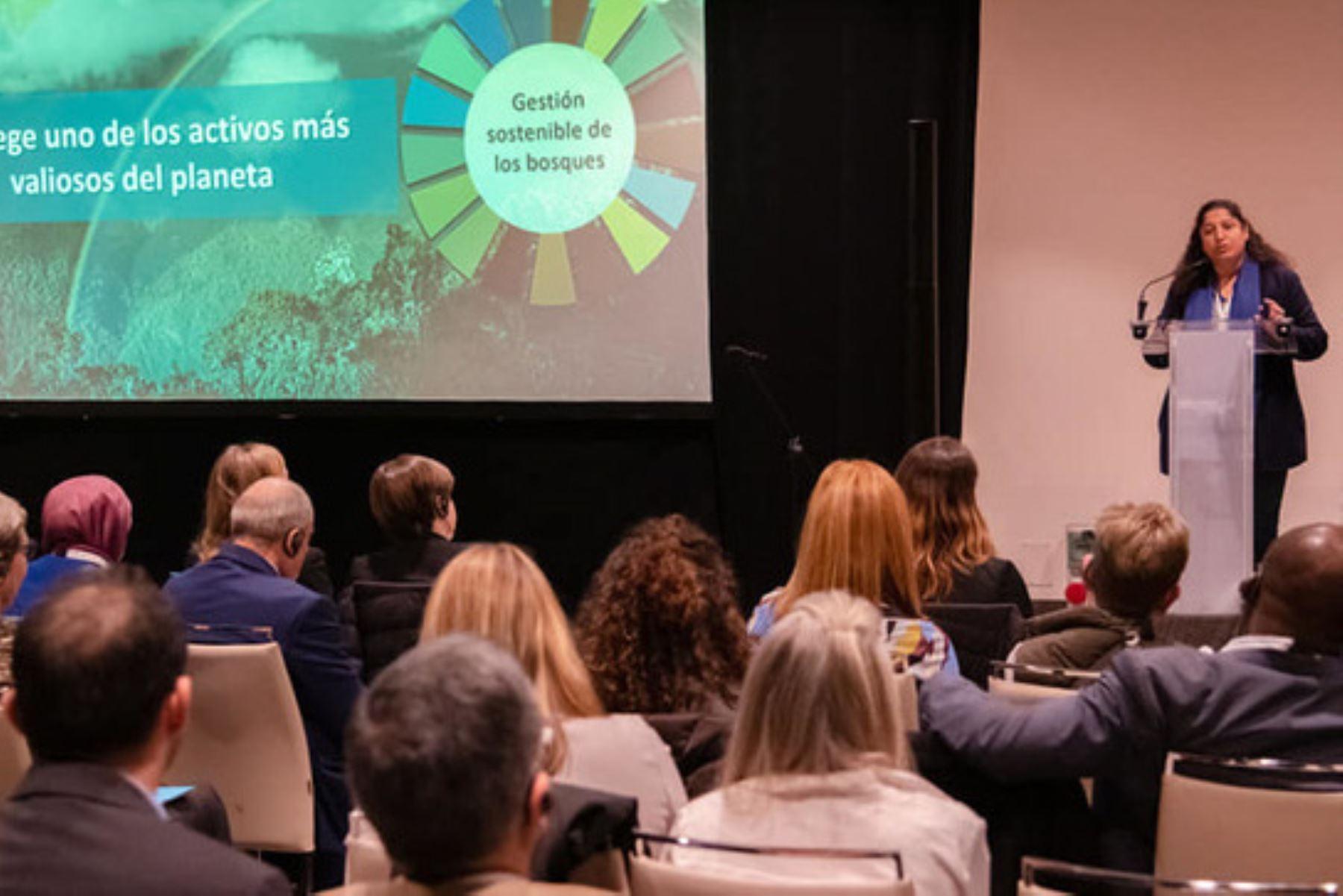 El Perú se compromete ante la COP25 acelerar la reducción de emisiones de gases de efecto invernadero al 2030. ANDINA/Difusión