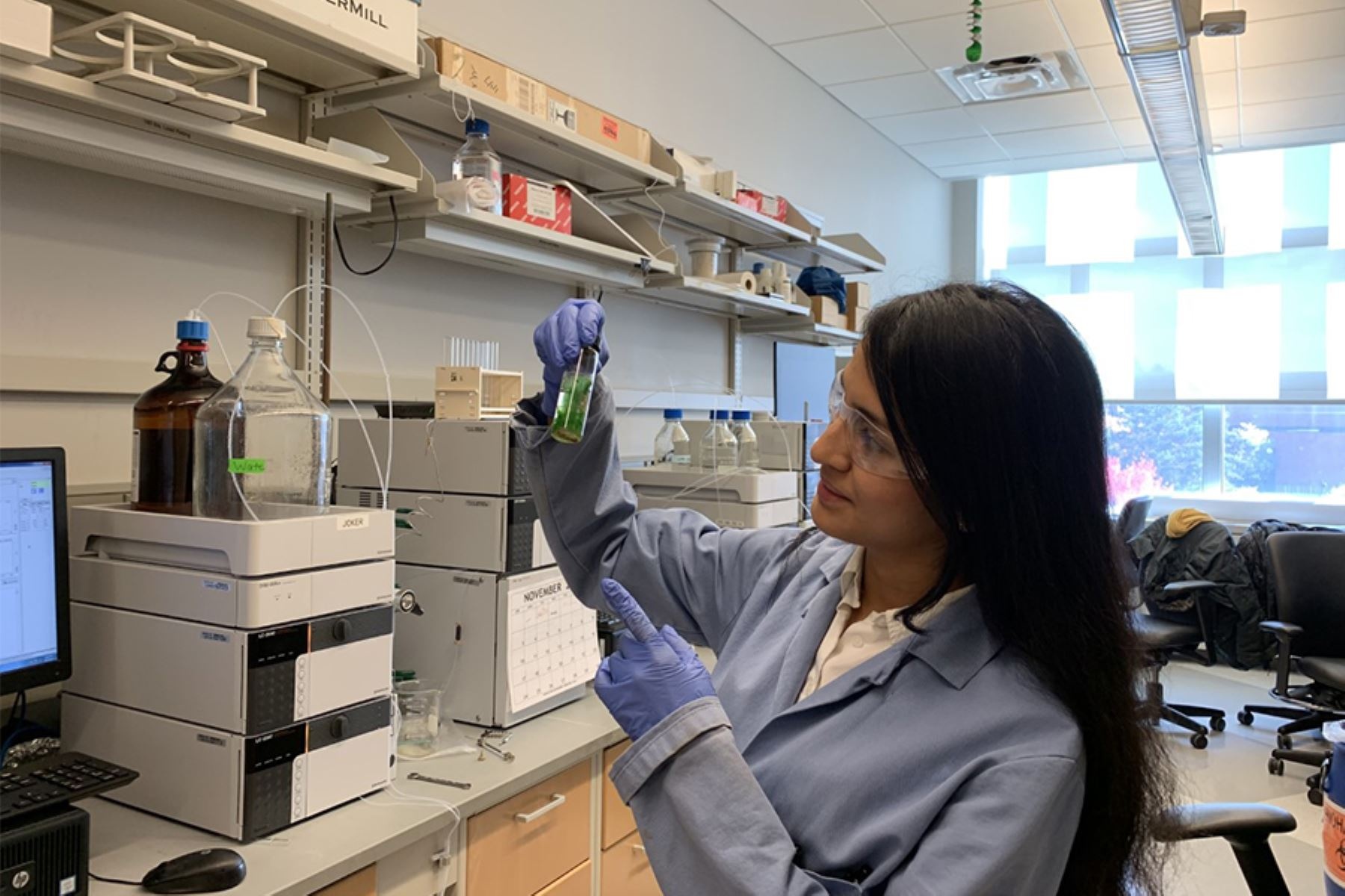 Científica peruana Rosa Vásquez analiza muestras de algas de Michigan, donde cursa su doctorado