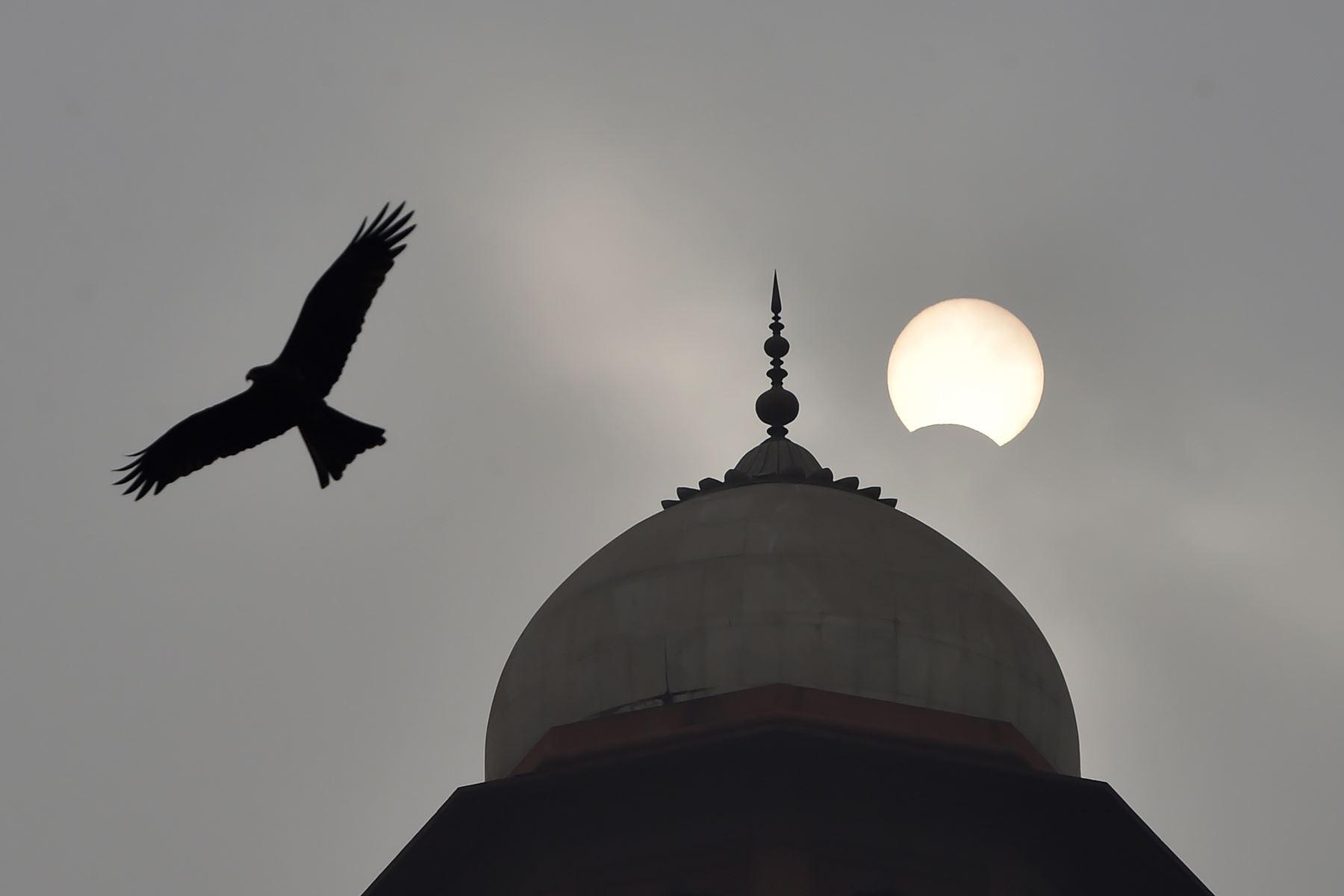 """La luna comienza a cubrir el sol durante un eclipse solar de """"anillo de fuego"""", mientras un águila pasa volando, en la mezquita Badshahi en Lahore el 26 de diciembre de 2019. Foto: AFP"""