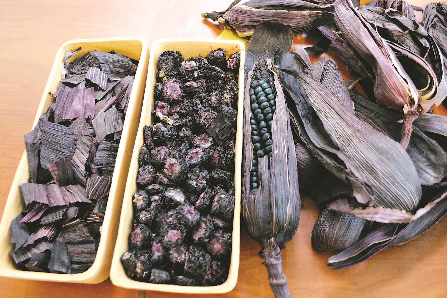 En el futuro, el maíz morado será tendencia entre los productos más requeridos para prevenir algunos tipos de cáncer, además de disminuir la presión alta y el colesterol. Entre las variedades de este singular grano andino existe una especial: la INIA 601, desarrollada por especialistas del Instituto Nacional de Innovación Agraria (INIA) de Cajamarca. Foto: ANDINA.