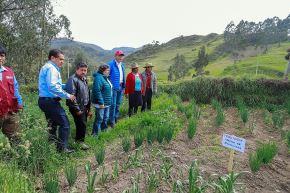 El programa Haku Wiñay del Midis impulsa proyectos productivos en la zona rural y apoya a la población a generar recursos con autonomía.