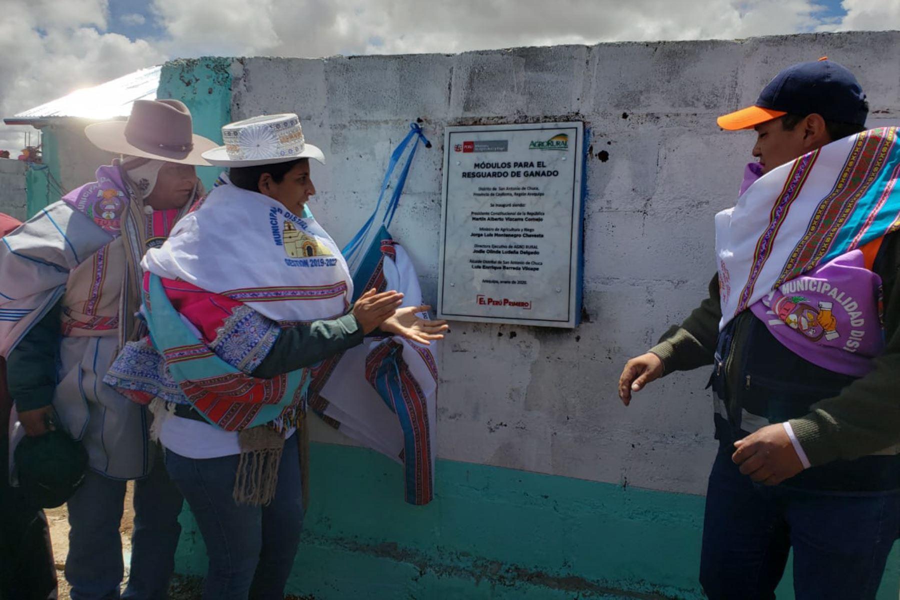 Ministerio de Agricultura entrega 30 cobertizos para proteger a alpacas y ovinos en zonas altas de Arequipa. ANDINA/Difusión