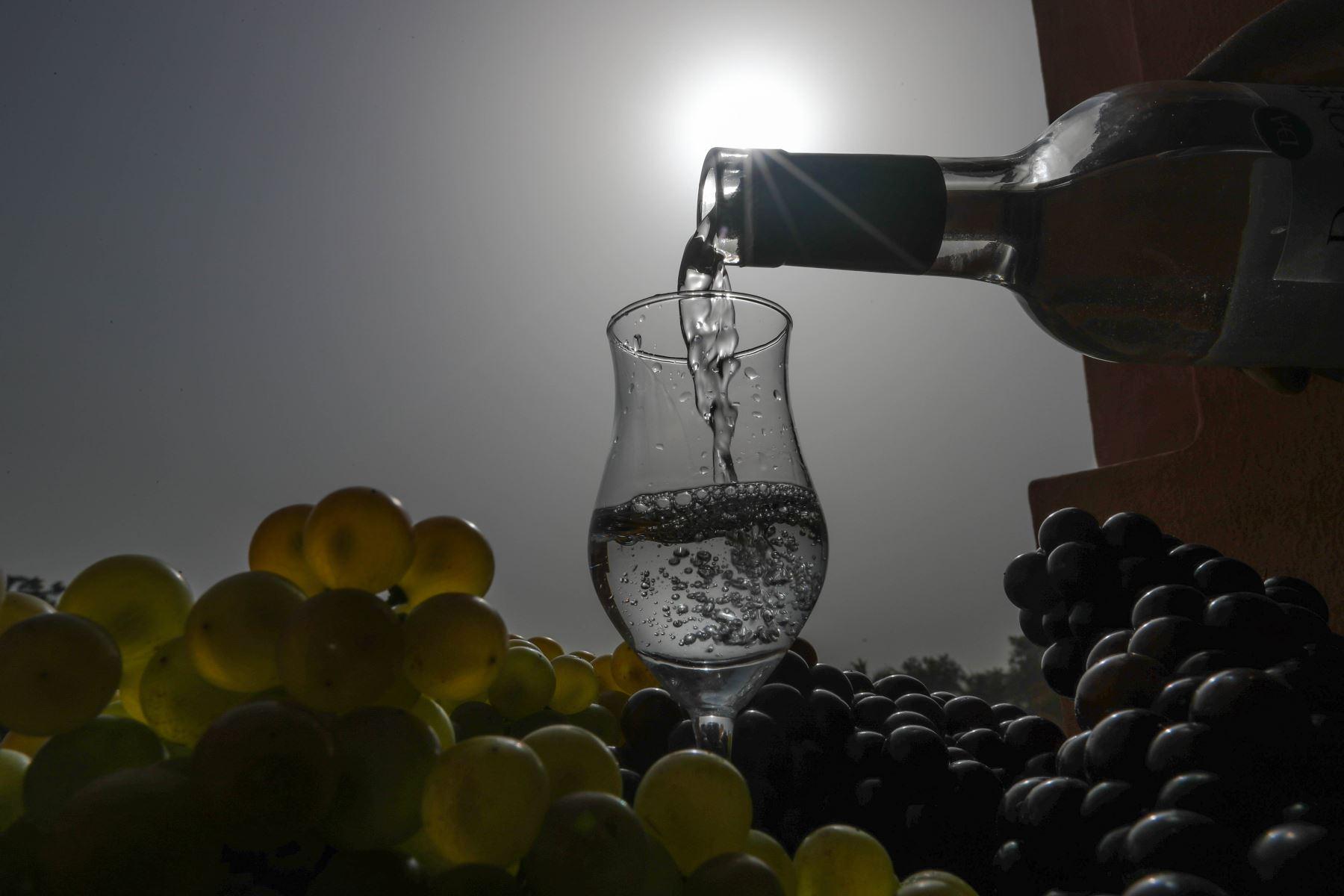 """El pisco es el destilado bandera del Perú. Y son ocho los tipos de uva con los que se produce el pisco en el Perú, reconocidas como """"uvas pisqueras"""", las cuales se dividen en dos grupos: aromática y no aromática.  ANDINA/Jack Ramón"""