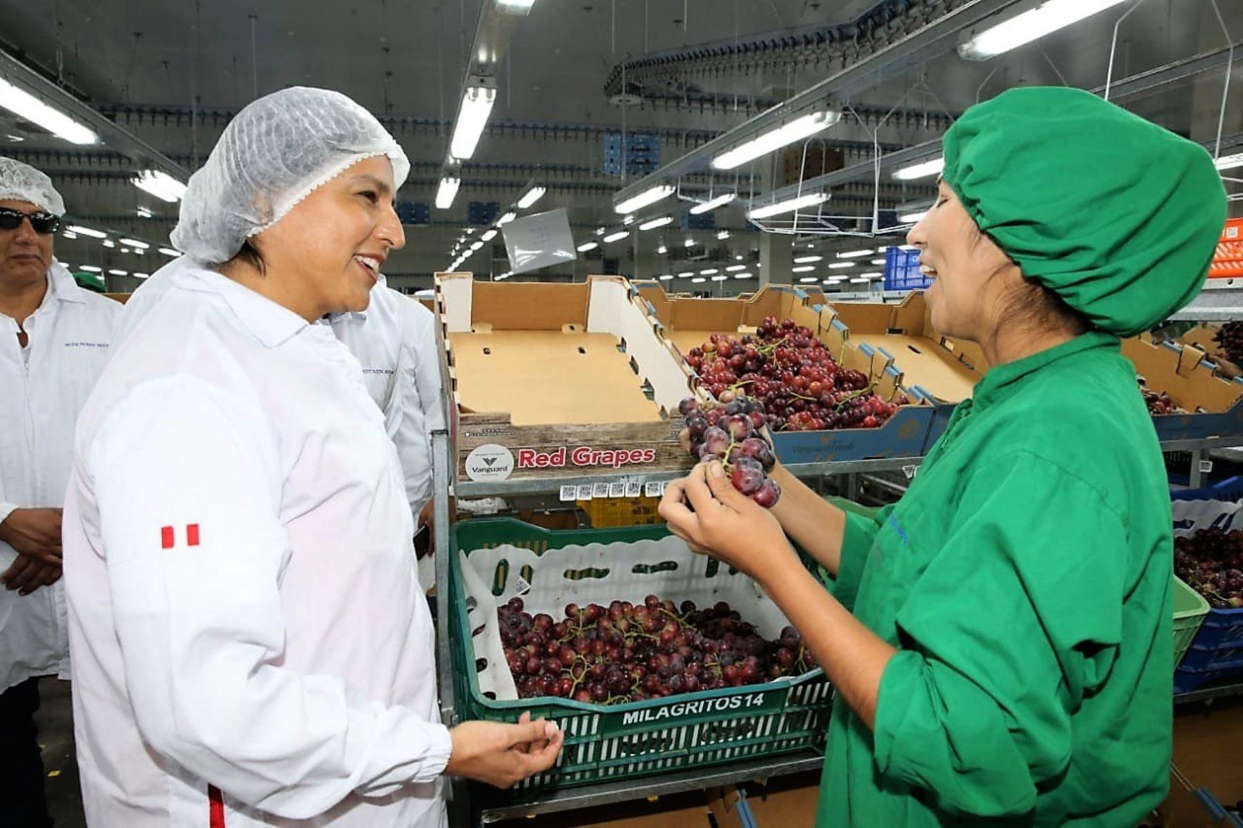 La ministra de Trabajo, Sylvia Cáceres, participó en una visita de fiscalización en Ica.