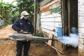 Especialistas brindarán asesoramiento al personal regional de salud para combatir el brote de dengue que enfrentan.