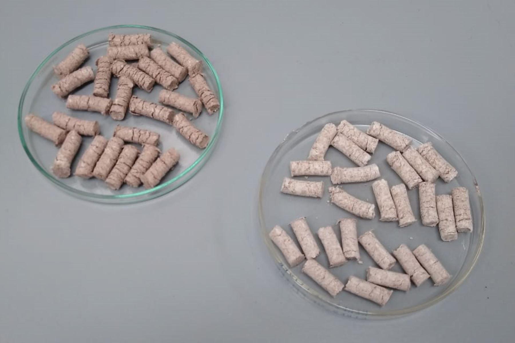 Estos son los pellets elaborados con residuos de conchas de abanico y langostino que sirven para descontaminar el agua. ANDINA/Difusión