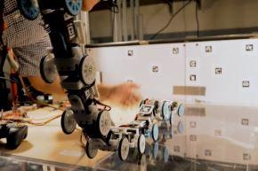 Al estudiar los movimientos de escalada de la serpiente rey, un equipo de ingenieros mecánicos construyó un robot serpiente que podría ayudar a avanzar en la tecnología de búsqueda y rescate.