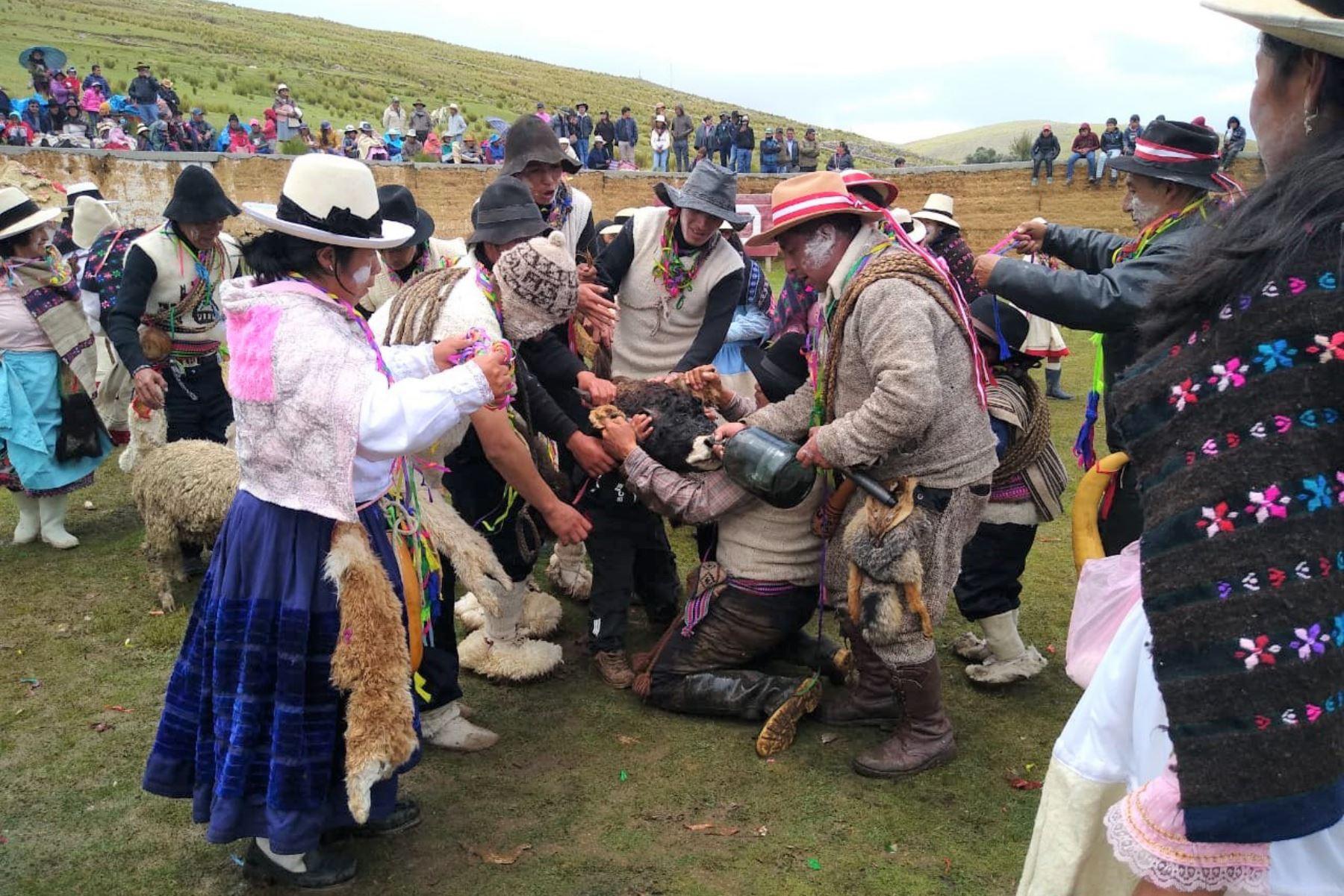Ondores celebra tradicional fiesta de la Herranza e inicia festejos por carnavales en Junín. Foto: Pedro Tinoco