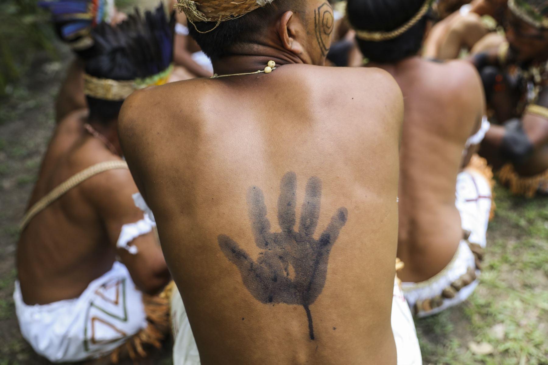 Jóvenes shipibos pintan en sus cuerpos las marcas de la Amazonía. Foto: ANDINA/Carla Patiño