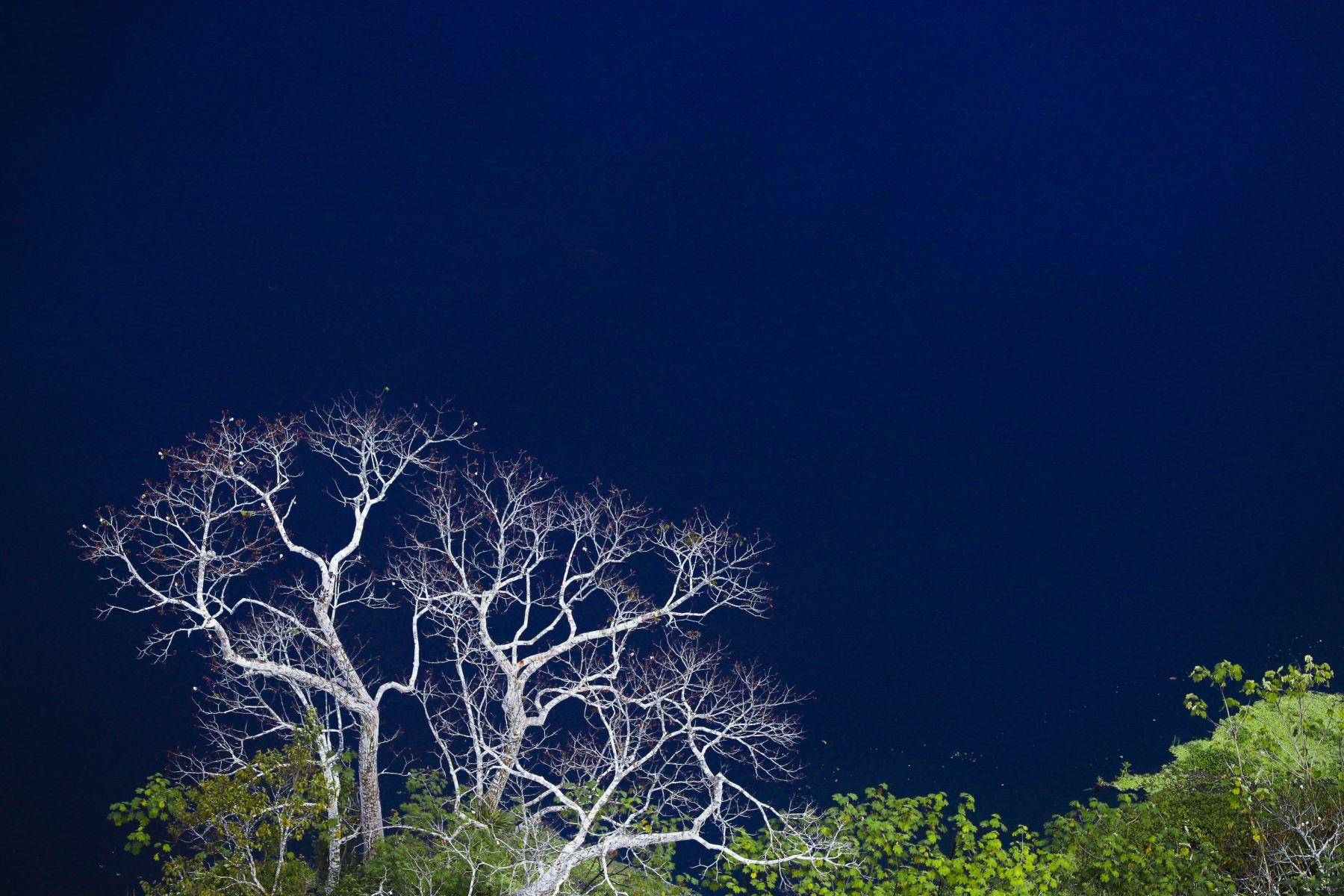 Fotografía panorámica desde un viaje en helicóptero del Río Amazonas.Foto: ANDINA/Andrés Valle