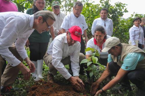 Impulso de proyectos productivos y protección de la Amazonía en Madre de Dios